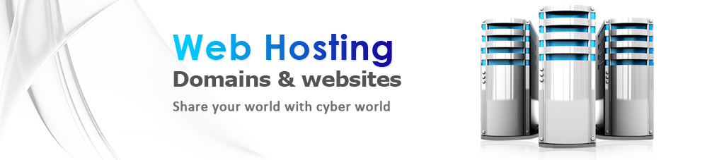 Web Hosting Delhi, Web Hosting Company in Delhi