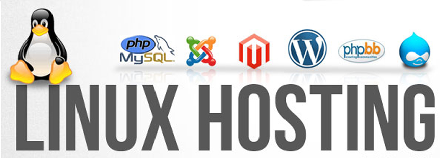 Linux Web Hosting Service Provider Company in India